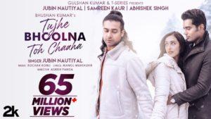 Tujhe Bhoolna Toh Chaaha Lyrics | Jubin Nautiyal