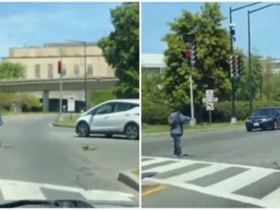 वायरल वीडियो में आदमी बत्तखों और उनकी मां को व्यस्त सड़क पार करने में मदद करता है।  भगवान उसे आशीर्वाद दें, ट्विटर कहते हैं